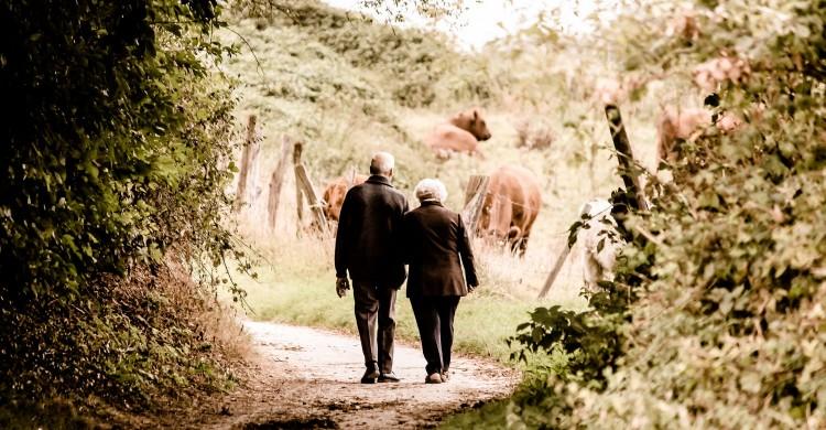 Bunicii nu mor niciodată, ci devin invizibili – Toată lumea ar trebui să citească, pentru a-și încălzi sufletul